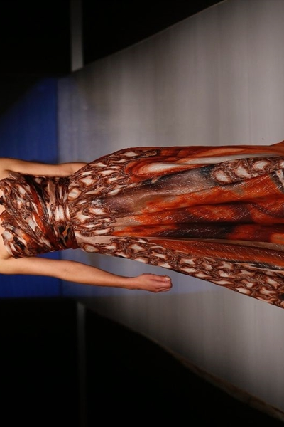 Tony Ward at Arab Fashion Week (6)